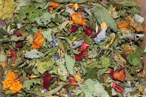 Die Vielfalt der üppigeren Jahreszeiten bereichert getrocknet den Speiseplan in der kargeren Zeit. (Foto: Mandarina)