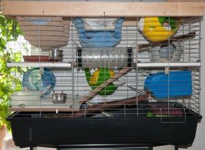 Umgebauter Gitterkäfig – ursprünglich für Meerschweinchen verkauft –   mit einer U‐Volletage oben und einer weiteren Dritteletage unten, der als Integrationskäfig verwendet wird.   (Bild: Nienor)