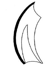 Schema eines Nagezahns, dick schwarz der Zahnschmelz (Bild: Nienor)