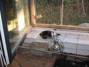 Ein geöffnetes Fenstern kann eine UV‐Lampe ersetzen.