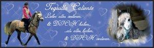 Tequilla Calientesign2.jpg