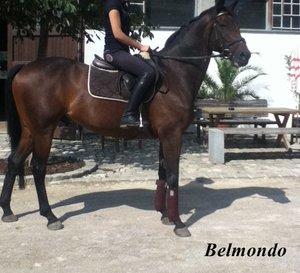 Belmondo zum Bearbeiten.jpg